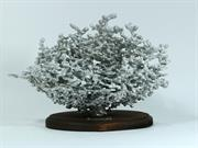 Aluminum Fire Ant Colony Cast #060 - Front Picture.